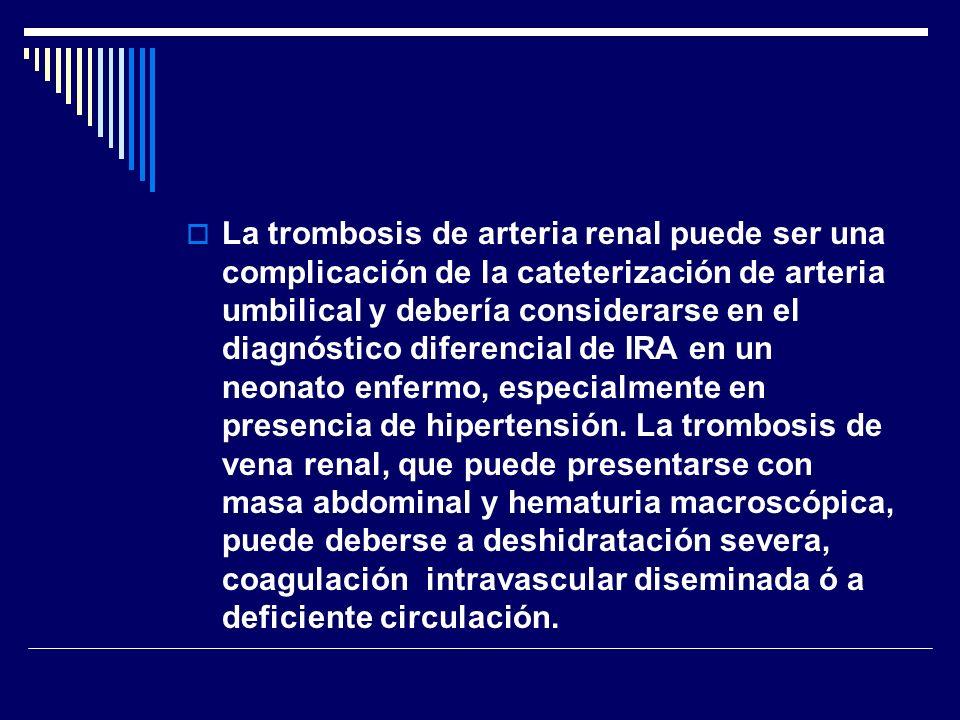 La trombosis de arteria renal puede ser una complicación de la cateterización de arteria umbilical y debería considerarse en el diagnóstico diferencia