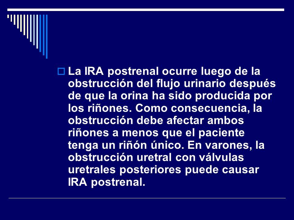 La IRA postrenal ocurre luego de la obstrucción del flujo urinario después de que la orina ha sido producida por los riñones. Como consecuencia, la ob