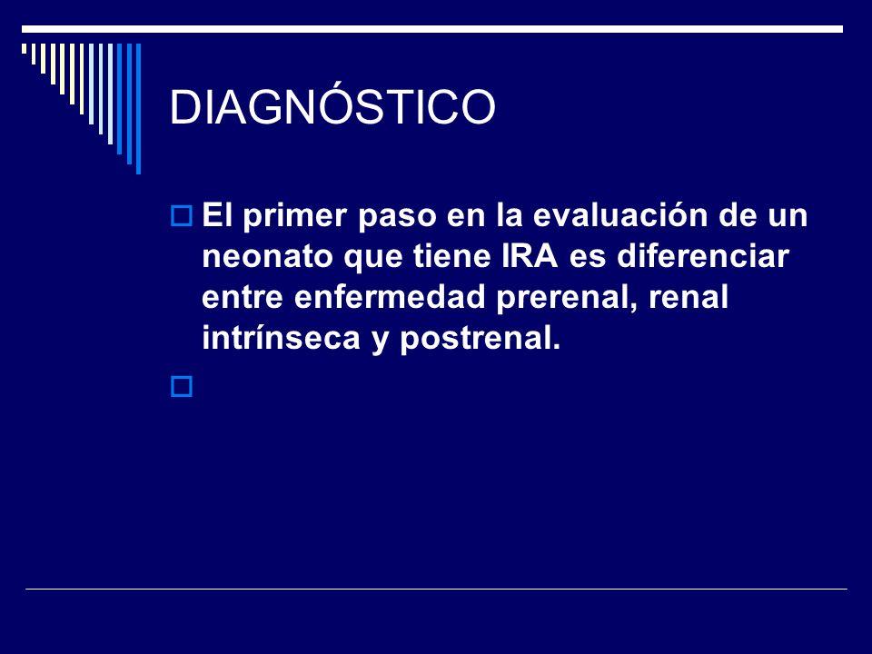 DIAGNÓSTICO El primer paso en la evaluación de un neonato que tiene IRA es diferenciar entre enfermedad prerenal, renal intrínseca y postrenal.