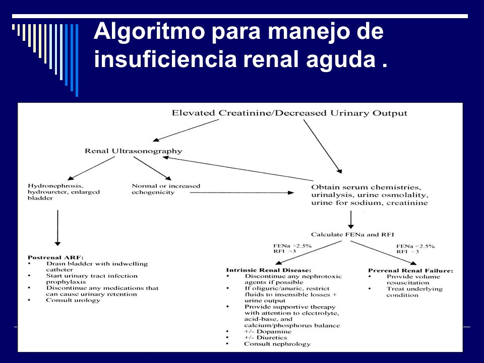 Algoritmo para manejo de insuficiencia renal aguda.