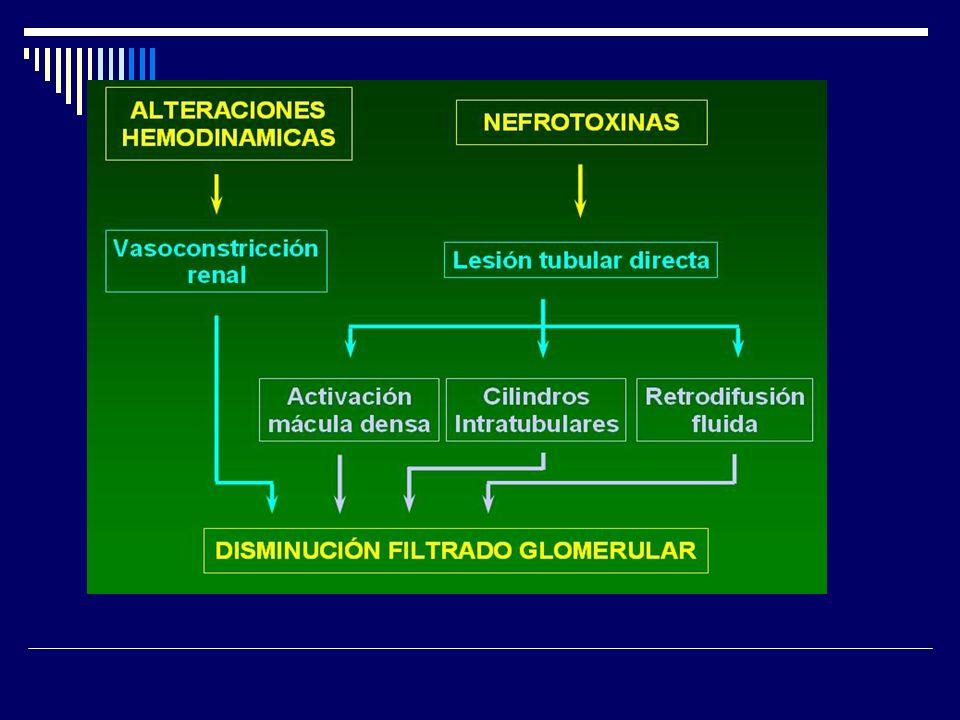 MANEJO MEDICO En caso de insuficiencia renal prerenal, la condición subyacente debiera ser tratada, implementando resucitación con volumen para restaurar la perfusión renal.