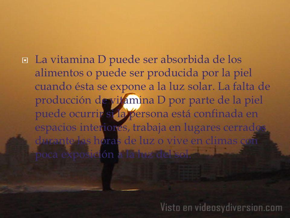 La vitamina D puede ser absorbida de los alimentos o puede ser producida por la piel cuando ésta se expone a la luz solar. La falta de producción de v