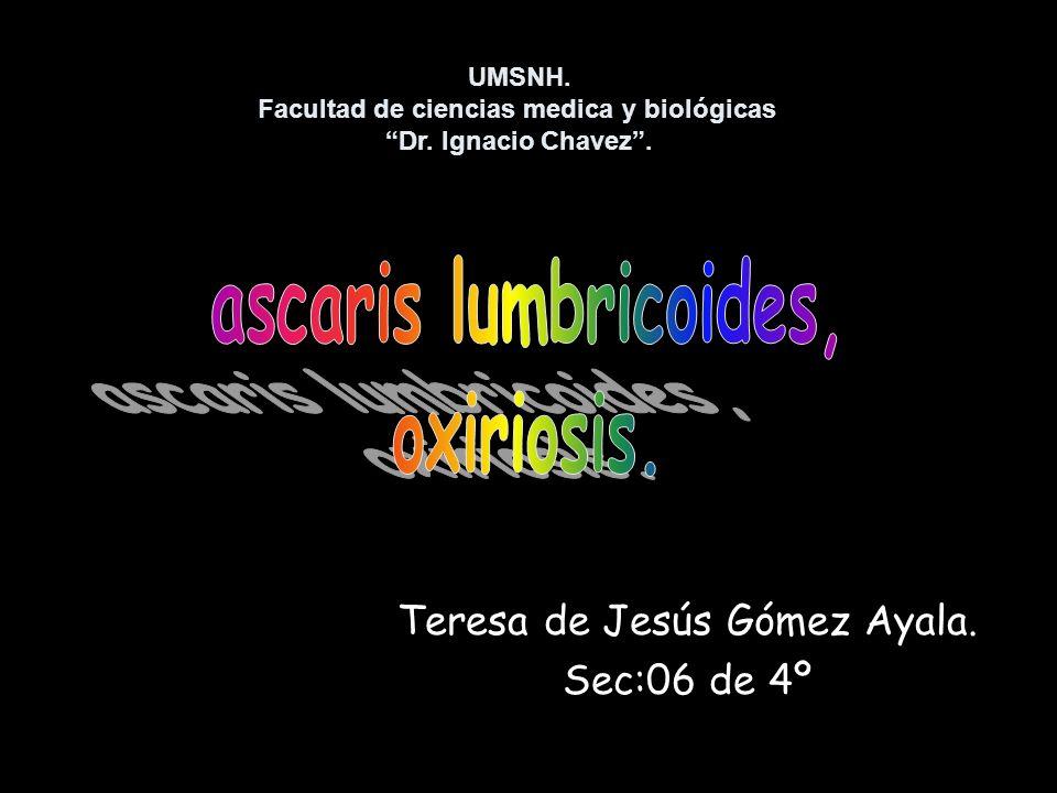 Teresa de Jesús Gómez Ayala. Sec:06 de 4º UMSNH. Facultad de ciencias medica y biológicas Dr. Ignacio Chavez.