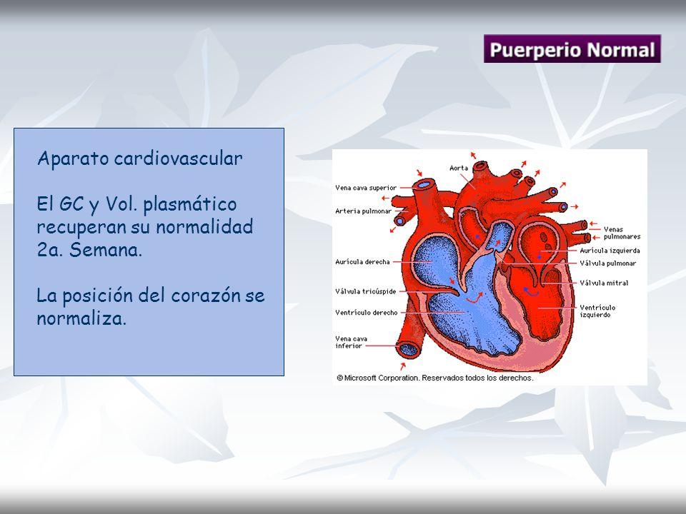 Aparato cardiovascular El GC y Vol. plasmático recuperan su normalidad 2a. Semana. La posición del corazón se normaliza.