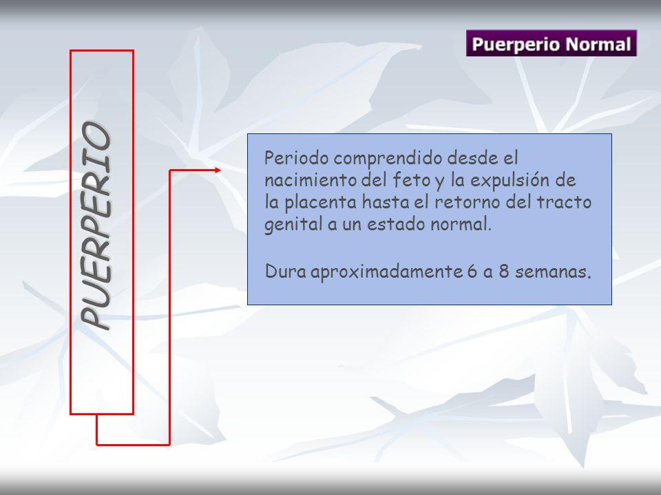 Infección Puerperal Endometritis o endomiometritis.