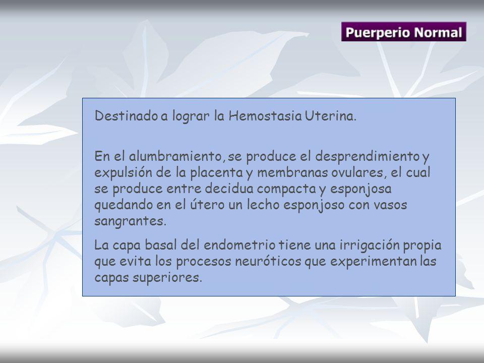 Destinado a lograr la Hemostasia Uterina. En el alumbramiento, se produce el desprendimiento y expulsión de la placenta y membranas ovulares, el cual