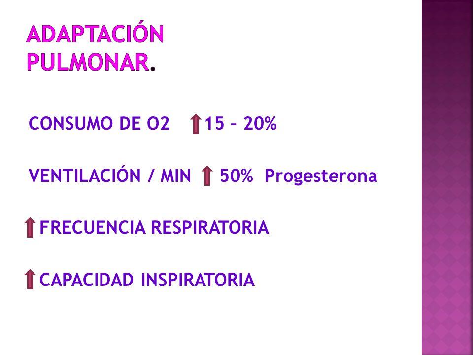 CONSUMO DE O2 15 – 20% VENTILACIÓN / MIN 50% Progesterona FRECUENCIA RESPIRATORIA CAPACIDAD INSPIRATORIA
