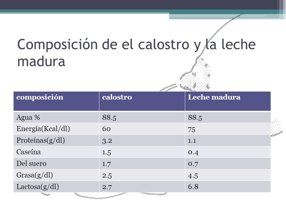 Composición de el calostro y la leche madura composicióncalostroLeche madura Agua %88.5 Energía(Kcal/dl)6075 Proteínas(g/dl)3.21.1 Caseína1.50.4 Del s