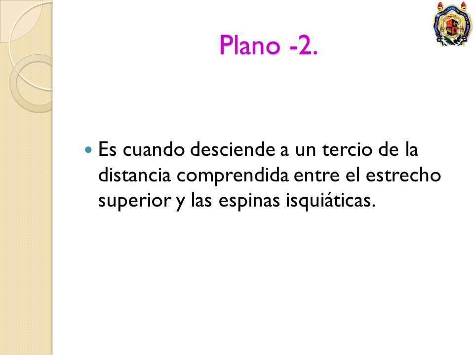 Plano -2. Es cuando desciende a un tercio de la distancia comprendida entre el estrecho superior y las espinas isquiáticas.
