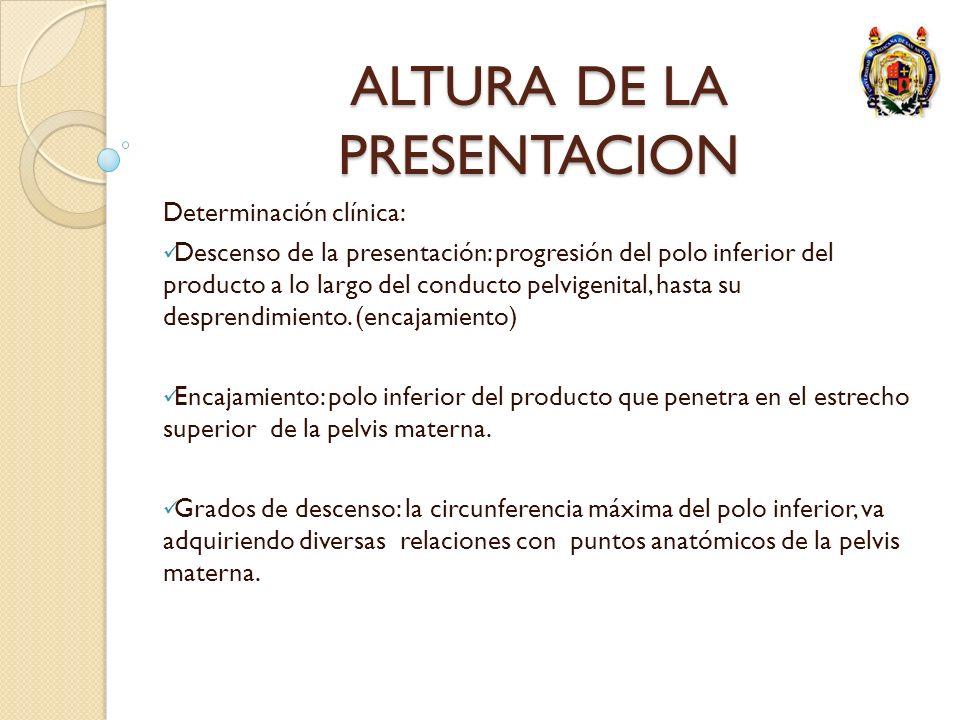 ALTURA DE LA PRESENTACION Determinación clínica: Descenso de la presentación: progresión del polo inferior del producto a lo largo del conducto pelvig
