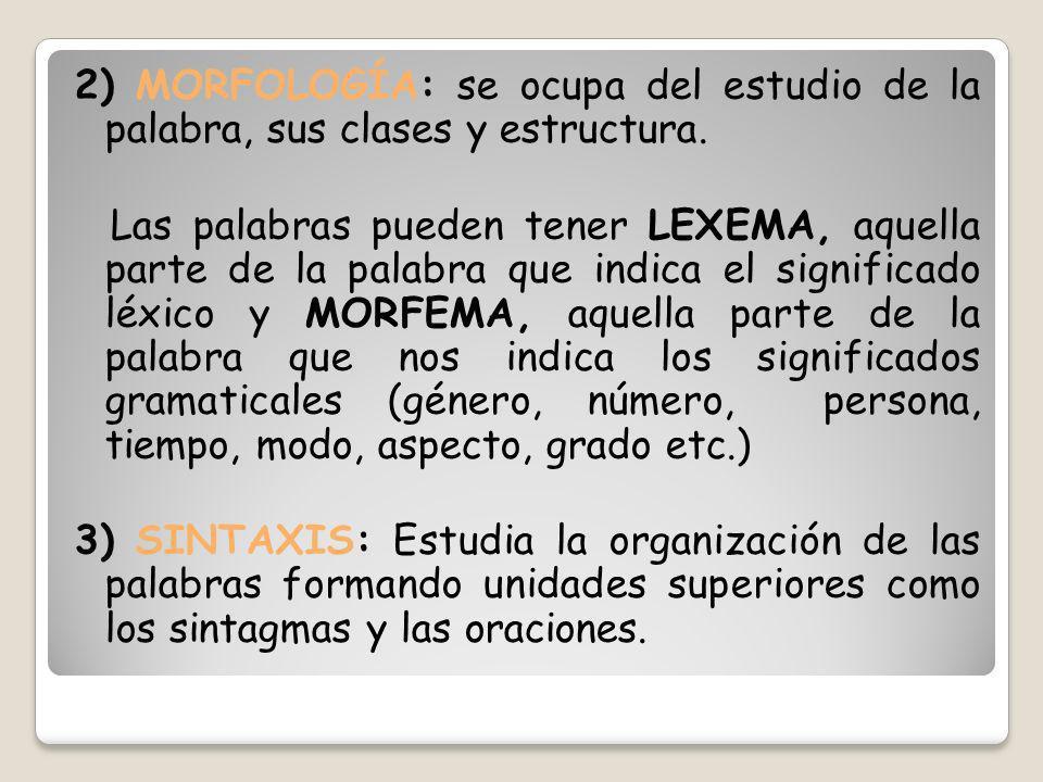 2) MORFOLOGÍA: se ocupa del estudio de la palabra, sus clases y estructura. Las palabras pueden tener LEXEMA, aquella parte de la palabra que indica e