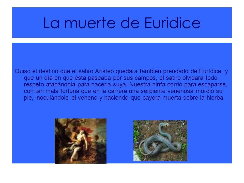 La muerte de Euridice Quiso el destino que el satiro Aristeo quedara también prendado de Eurídice, y que un día en que ésta paseaba por sus campos, el