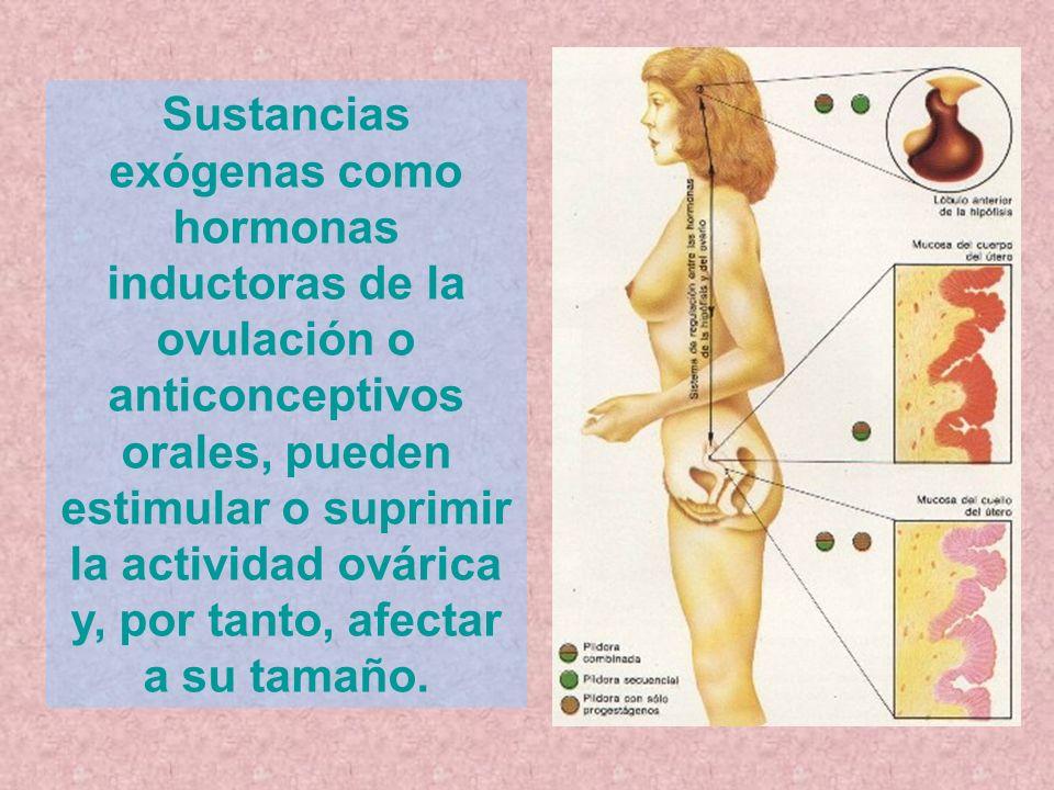 Sustancias exógenas como hormonas inductoras de la ovulación o anticonceptivos orales, pueden estimular o suprimir la actividad ovárica y, por tanto,