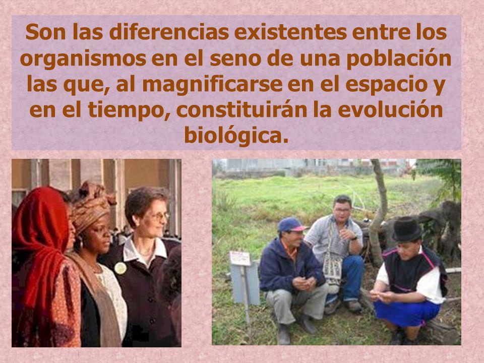 Son las diferencias existentes entre los organismos en el seno de una población las que, al magnificarse en el espacio y en el tiempo, constituirán la