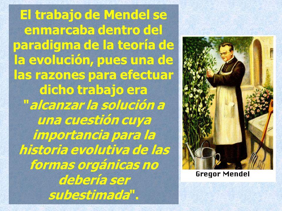 El trabajo de Mendel se enmarcaba dentro del paradigma de la teoría de la evolución, pues una de las razones para efectuar dicho trabajo era