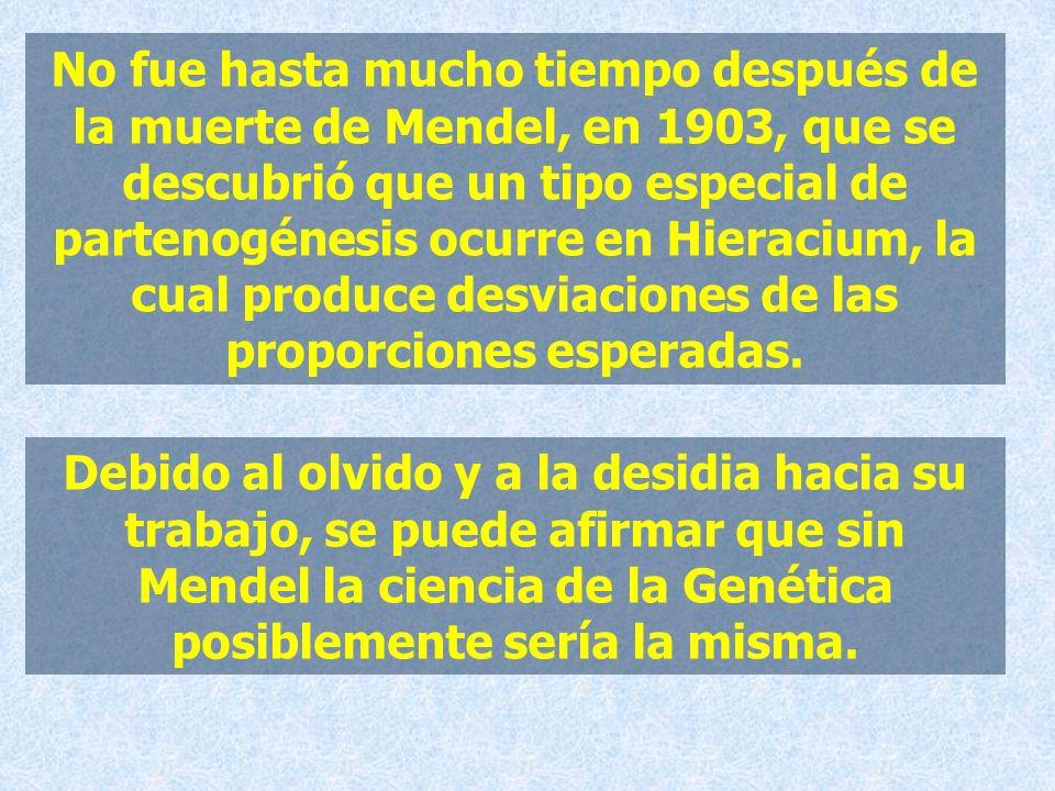 No fue hasta mucho tiempo después de la muerte de Mendel, en 1903, que se descubrió que un tipo especial de partenogénesis ocurre en Hieracium, la cua