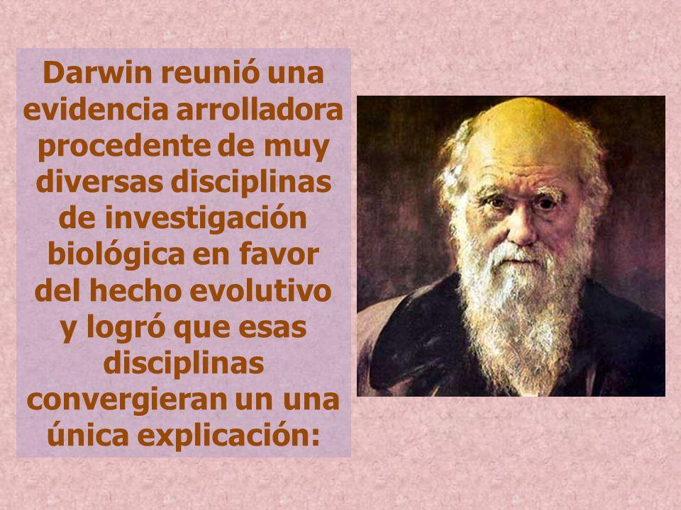 Darwin reunió una evidencia arrolladora procedente de muy diversas disciplinas de investigación biológica en favor del hecho evolutivo y logró que esa
