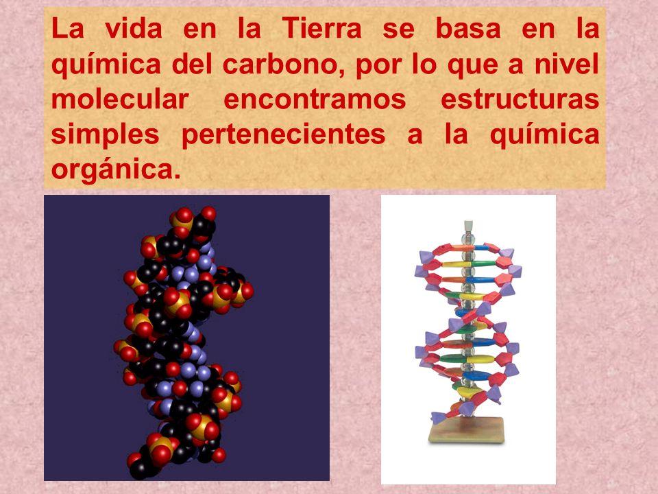 La vida en la Tierra se basa en la química del carbono, por lo que a nivel molecular encontramos estructuras simples pertenecientes a la química orgán