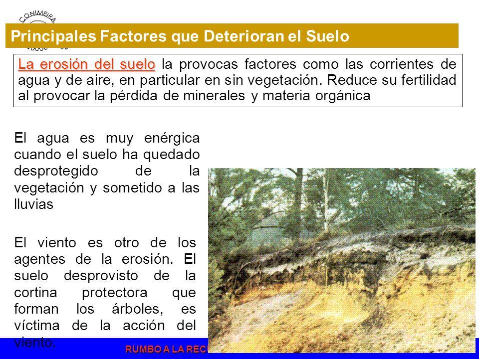 La erosión del suelo La erosión del suelo la provocas factores como las corrientes de agua y de aire, en particular en sin vegetación. Reduce su ferti