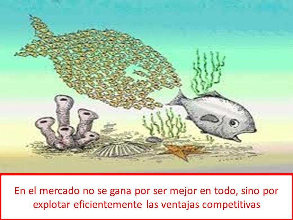 En el mercado no se gana por ser mejor en todo, sino por explotar eficientemente las ventajas competitivas