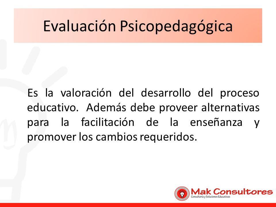 Evaluación Psicopedagógica Es la valoración del desarrollo del proceso educativo. Además debe proveer alternativas para la facilitación de la enseñanz