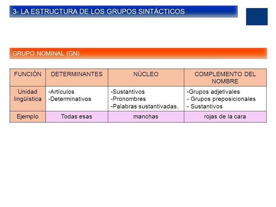3- LA ESTRUCTURA DE LOS GRUPOS SINTÁCTICOS GRUPO NOMINAL (GN) FUNCIÓNDETERMINANTESNÚCLEOCOMPLEMENTO DEL NOMBRE Unidad lingüística -Artículos -Determin