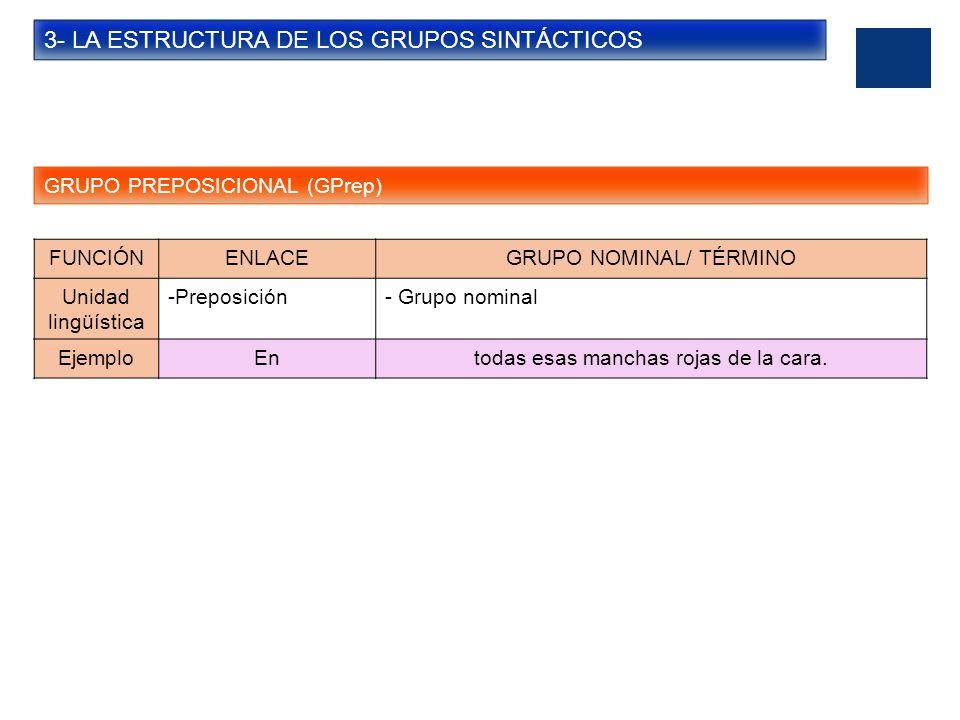 3- LA ESTRUCTURA DE LOS GRUPOS SINTÁCTICOS GRUPO PREPOSICIONAL (GPrep) FUNCIÓNENLACEGRUPO NOMINAL/ TÉRMINO Unidad lingüística -Preposición- Grupo nomi