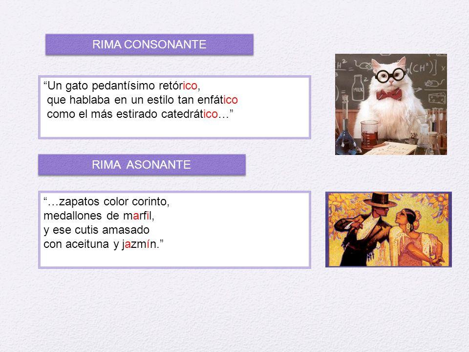 Un gato pedantísimo retórico, que hablaba en un estilo tan enfático como el más estirado catedrático… RIMA CONSONANTE RIMA ASONANTE …zapatos color cor