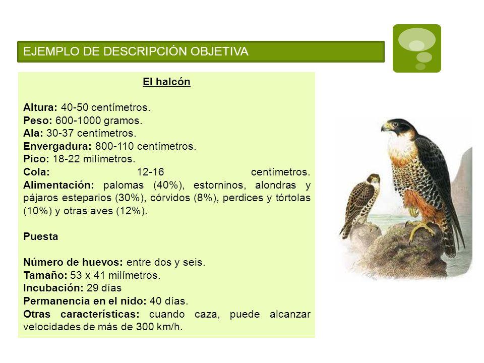EJEMPLO DE DESCRIPCIÓN OBJETIVA El halcón Altura: 40-50 centímetros. Peso: 600-1000 gramos. Ala: 30-37 centímetros. Envergadura: 800-110 centímetros.