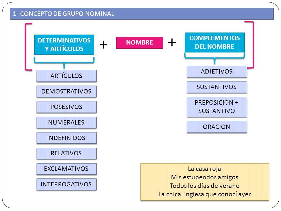 1- CONCEPTO DE GRUPO NOMINAL NOMBRE DETERMINATIVOS Y ARTÍCULOS COMPLEMENTOS DEL NOMBRE + + ARTÍCULOS DEMOSTRATIVOS POSESIVOS NUMERALES INDEFINIDOS REL