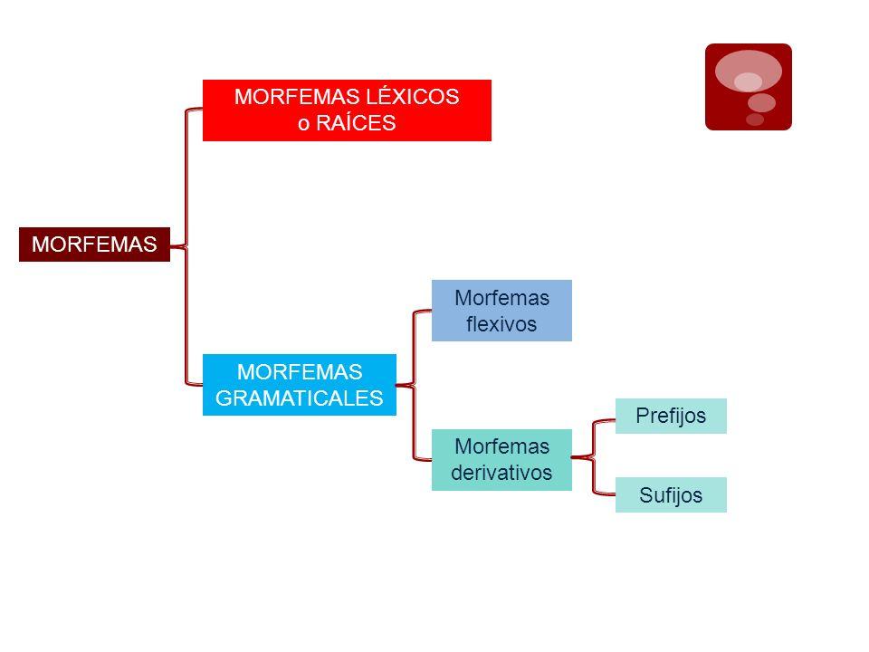 MORFEMAS MORFEMAS LÉXICOS o RAÍCES MORFEMAS GRAMATICALES Morfemas flexivos Morfemas derivativos Prefijos Sufijos