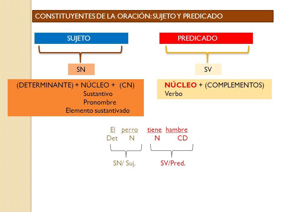 CONSTITUYENTES DE LA ORACIÓN: SUJETO Y PREDICADO SUJETOPREDICADO SNSV (DETERMINANTE) + NÚCLEO + (CN) Sustantivo Pronombre Elemento sustantivado NÚCLEO