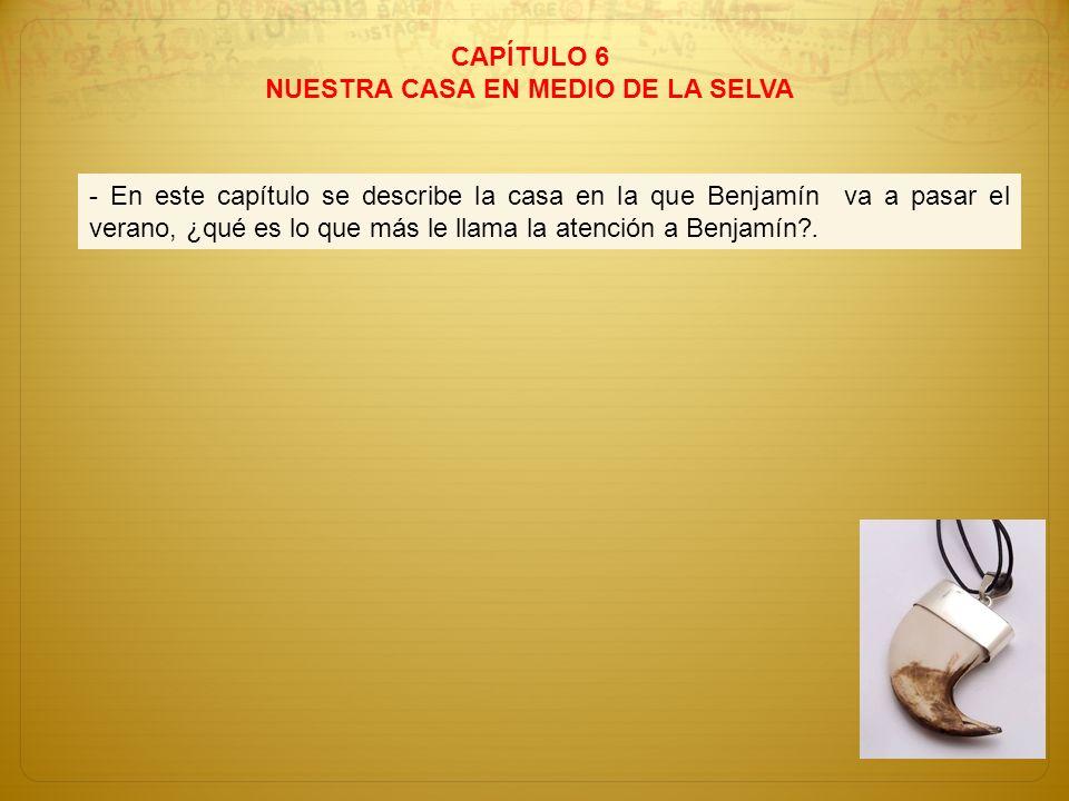 CAPÍTULO 6 NUESTRA CASA EN MEDIO DE LA SELVA - En este capítulo se describe la casa en la que Benjamín va a pasar el verano, ¿qué es lo que más le lla