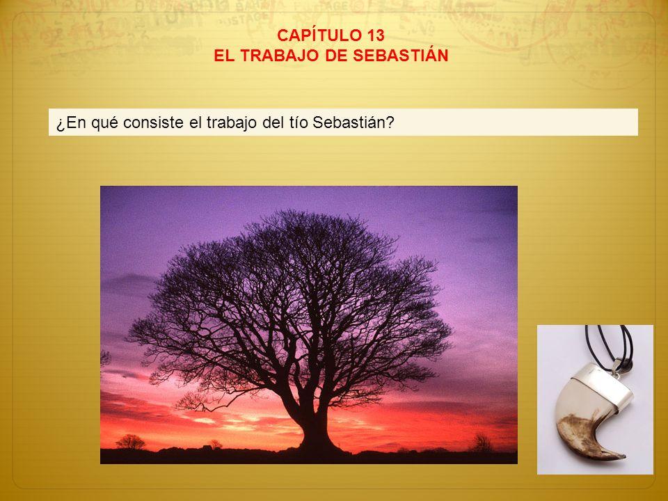 CAPÍTULO 13 EL TRABAJO DE SEBASTIÁN ¿En qué consiste el trabajo del tío Sebastián?