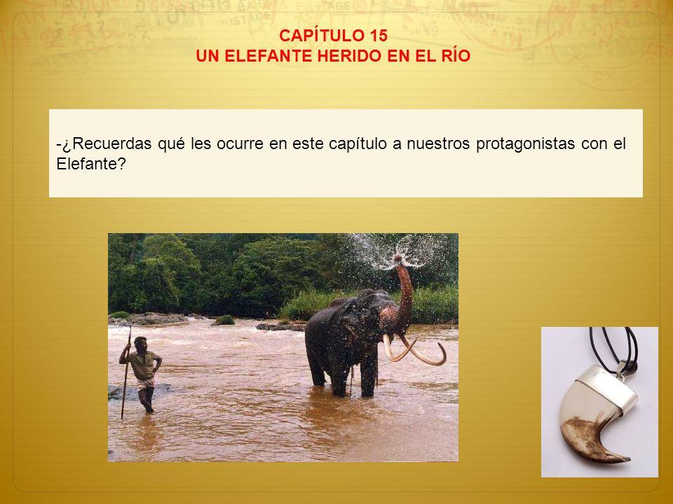 CAPÍTULO 15 UN ELEFANTE HERIDO EN EL RÍO -¿Recuerdas qué les ocurre en este capítulo a nuestros protagonistas con el Elefante?