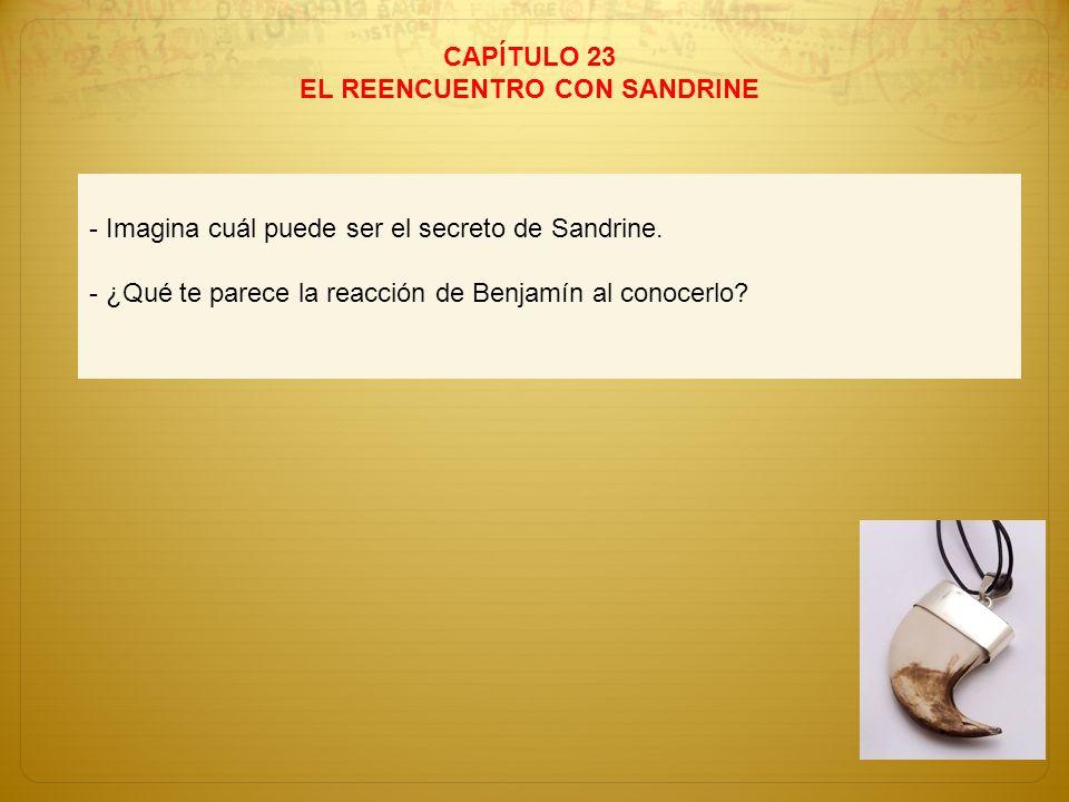 CAPÍTULO 23 EL REENCUENTRO CON SANDRINE - Imagina cuál puede ser el secreto de Sandrine. - ¿Qué te parece la reacción de Benjamín al conocerlo?