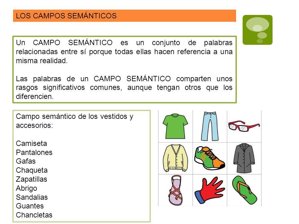 NO hay que confundir CAMPO SEMÁNTICO con FAMILIA LÉXICA CAMPO SEMÁNTICOFAMILIA LÉXICA Conjunto de palabras relacionadas entre sí porque hacen referencia a una misma realidad.