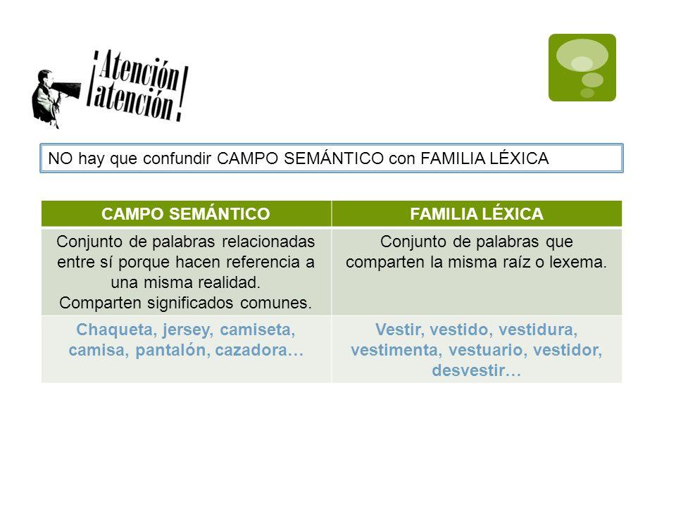 NO hay que confundir CAMPO SEMÁNTICO con FAMILIA LÉXICA CAMPO SEMÁNTICOFAMILIA LÉXICA Conjunto de palabras relacionadas entre sí porque hacen referenc