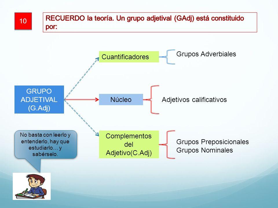 10 GRUPO ADJETIVAL (G.Adj) Núcleo Adjetivos calificativos Cuantificadores Complementos del Adjetivo(C.Adj) Grupos Preposicionales Grupos Nominales No