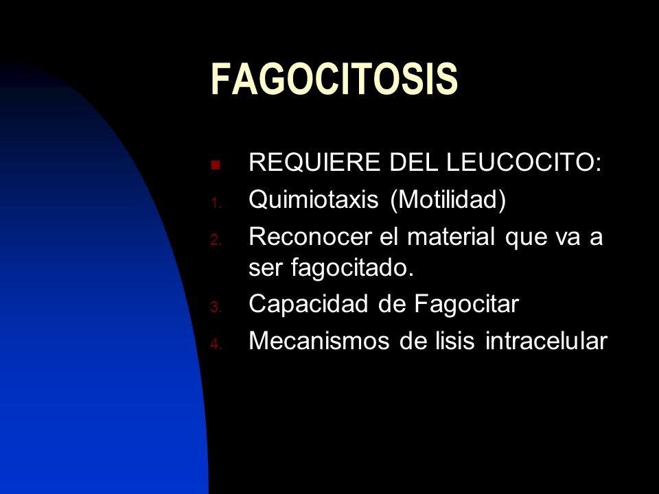 FAGOCITOSIS REQUIERE DEL LEUCOCITO: 1. Quimiotaxis (Motilidad) 2. Reconocer el material que va a ser fagocitado. 3. Capacidad de Fagocitar 4. Mecanism