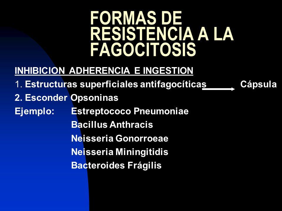 FORMAS DE RESISTENCIA A LA FAGOCITOSIS INHIBICION ADHERENCIA E INGESTION 1. Estructuras superficiales antifagocíticasCápsula 2. Esconder Opsoninas Eje