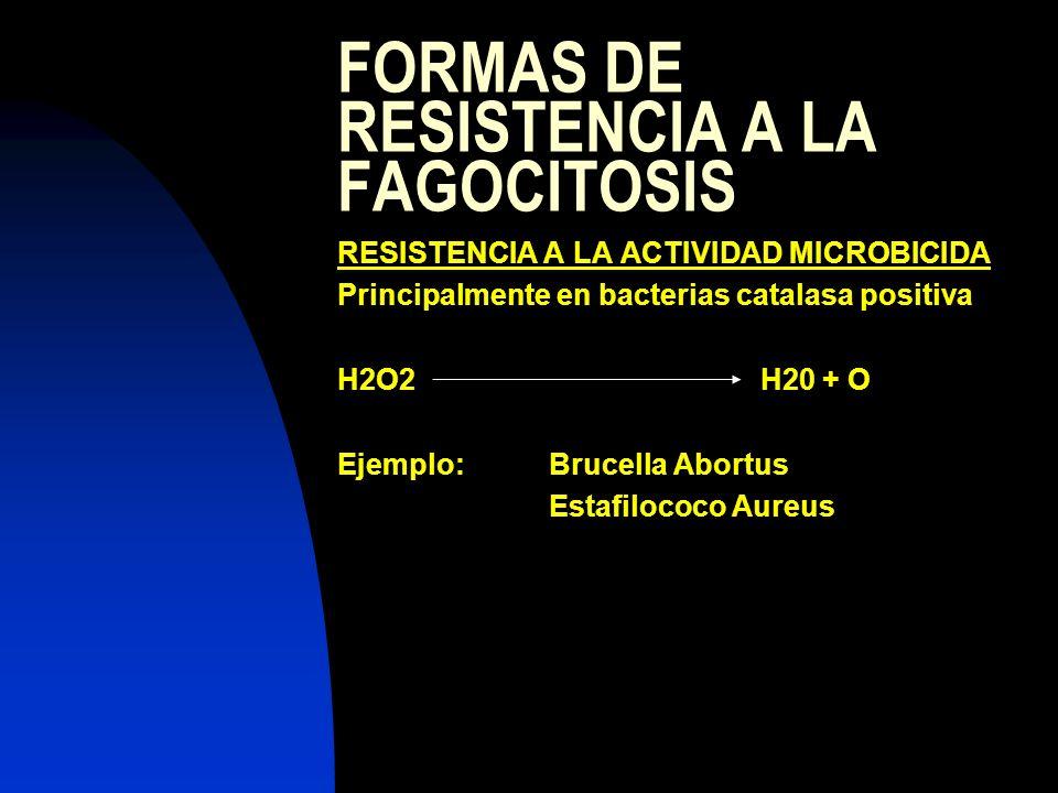 FORMAS DE RESISTENCIA A LA FAGOCITOSIS RESISTENCIA A LA ACTIVIDAD MICROBICIDA Principalmente en bacterias catalasa positiva H2O2H20 + O Ejemplo:Brucel