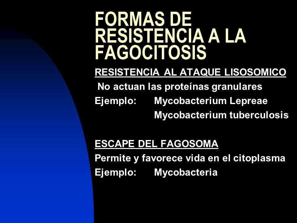 FORMAS DE RESISTENCIA A LA FAGOCITOSIS RESISTENCIA AL ATAQUE LISOSOMICO No actuan las proteínas granulares Ejemplo:Mycobacterium Lepreae Mycobacterium