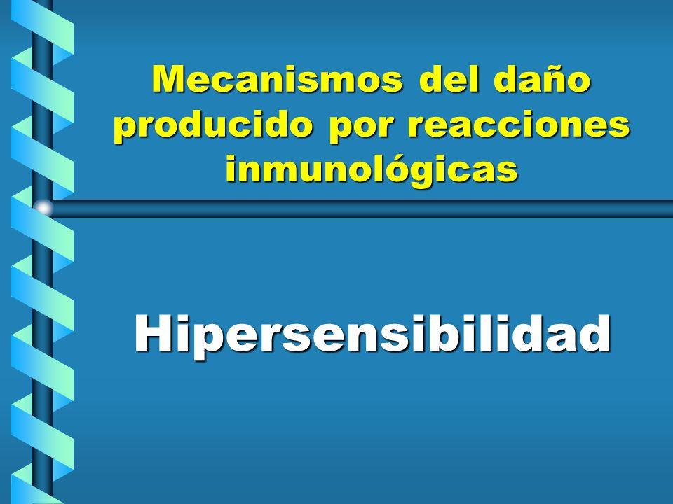 Acción de mediadores farmacológicos de la hipersensibilidad inmediata HistaminaHistamina SerotoninaSerotonina Factor quimiotáctico de los eosinófilos en la anafilaxiaFactor quimiotáctico de los eosinófilos en la anafilaxia LeucotrienosLeucotrienos Factor de la activación de las plaquetasFactor de la activación de las plaquetas Bradicinina y otras cininasBradicinina y otras cininas AnafilotoxinasAnafilotoxinas