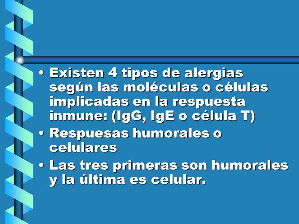 Existen 4 tipos de alergias según las moléculas o células implicadas en la respuesta inmune: (IgG, IgE o célula T)Existen 4 tipos de alergias según la