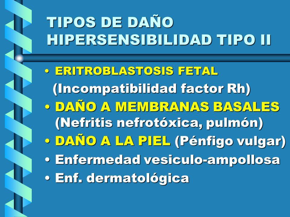 TIPOS DE DAÑO HIPERSENSIBILIDAD TIPO II ERITROBLASTOSIS FETALERITROBLASTOSIS FETAL (Incompatibilidad factor Rh) (Incompatibilidad factor Rh) DAÑO A ME