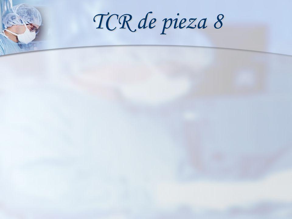 TCR de pieza 8