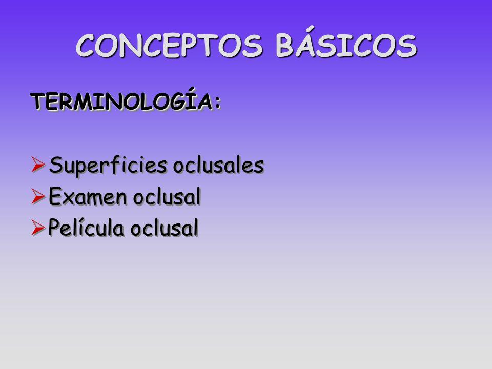 CONCEPTOS BÁSICOS TERMINOLOGÍA: Superficies oclusales Examen oclusal Película oclusalTERMINOLOGÍA: Superficies oclusales Examen oclusal Película oclus