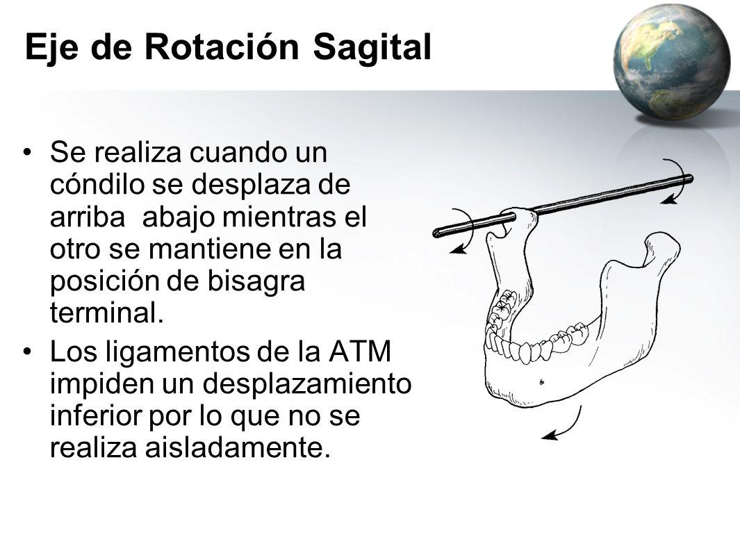 Eje de Rotación Sagital Se realiza cuando un cóndilo se desplaza de arriba abajo mientras el otro se mantiene en la posición de bisagra terminal. Los