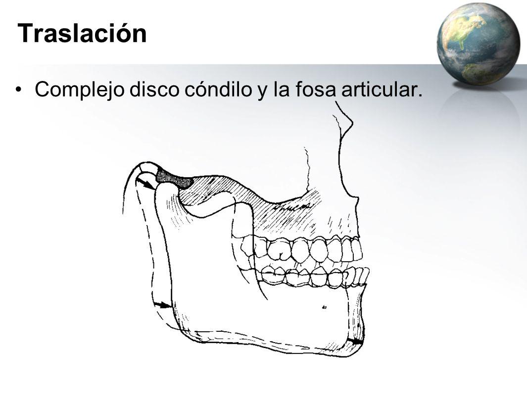 Traslación Complejo disco cóndilo y la fosa articular.